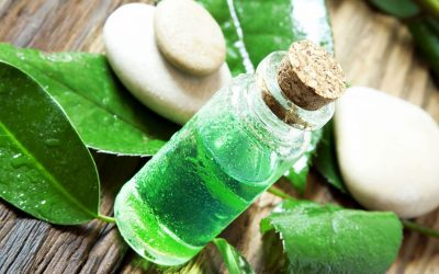 Tea Tree Oil Poisoning in Pets